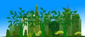 piante-purificano-casa