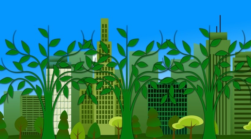 Case Green: le piante che purificano l'aria