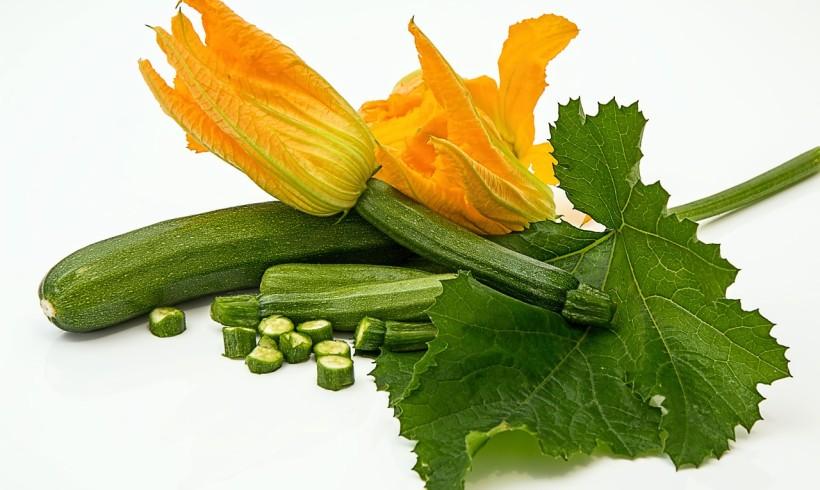 S.O.S Oidio: cosa accade alle nostre Zucchine