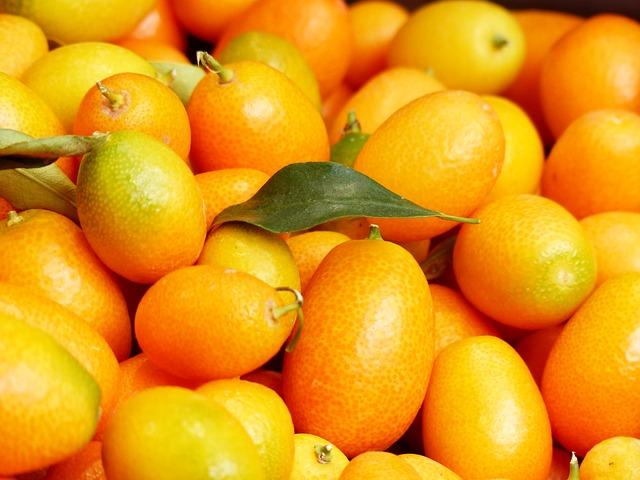 Kumquat: dalla coltivazione alla tavola