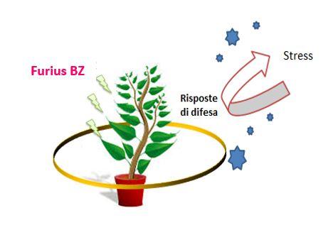 Nuove frontiere nella protezione delle piante