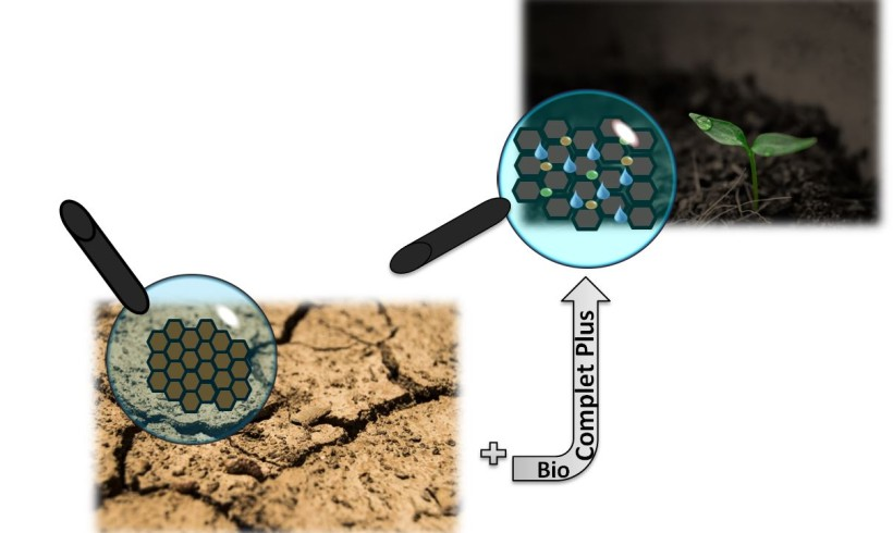 Acidi umici e Aminoacidi : indispensabili per la nutrizione delle piante