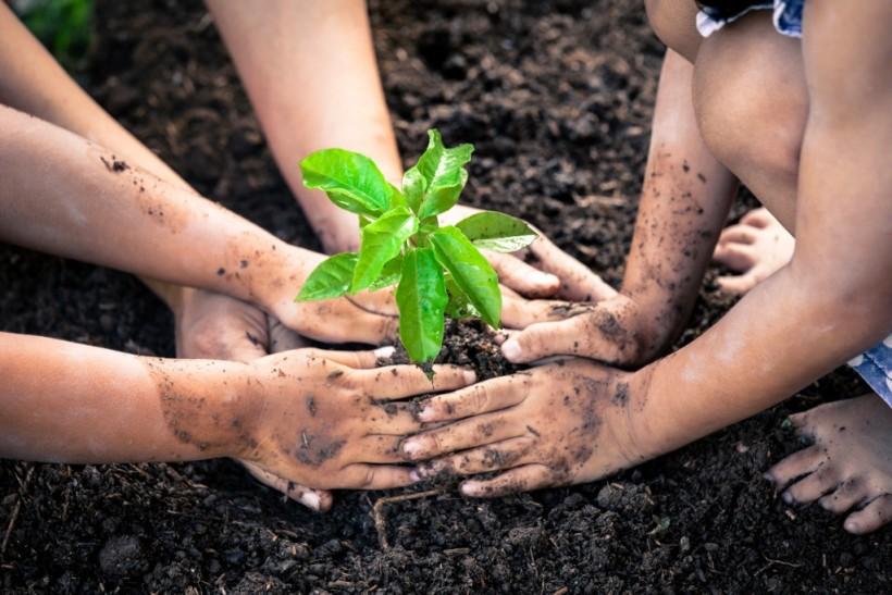 La certezza del tradizionale concime organico arricchito dalla tecnologia BPC