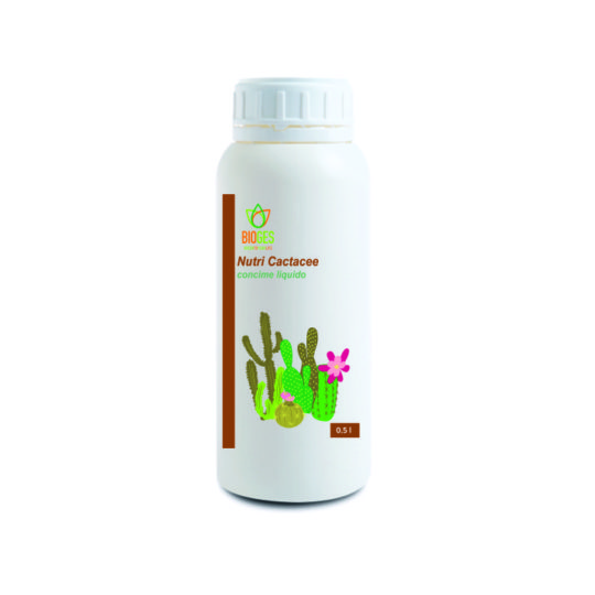 Concime liquido per piante succulente