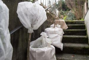 teli, e coperture delle piante per l' inverno