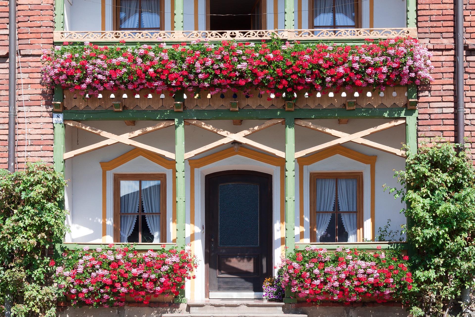 Fiori Perenni Da Balcone fiori da balcone: una cascata di colori in primavera