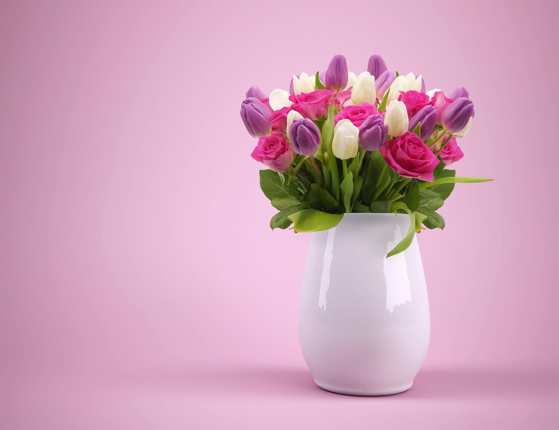 Piantare I Bulbi Di Tulipani piantare tulipani: consigli di bioges sulla cura e messa a